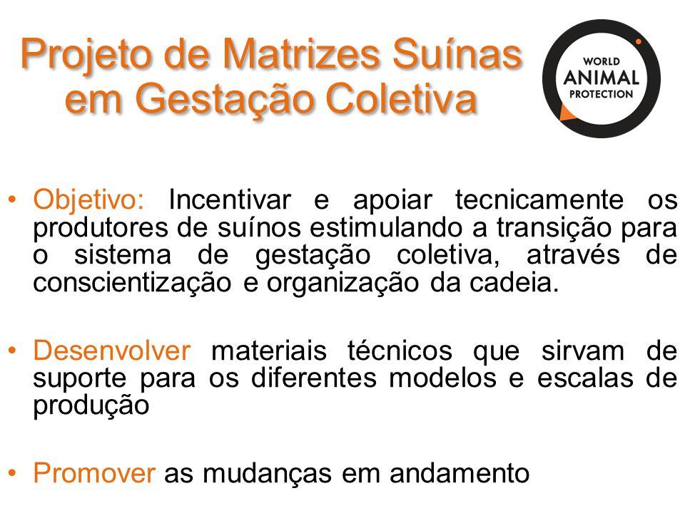 Projeto de Matrizes Suínas em Gestação Coletiva Objetivo: Incentivar e apoiar tecnicamente os produtores de suínos estimulando a transição para o sist