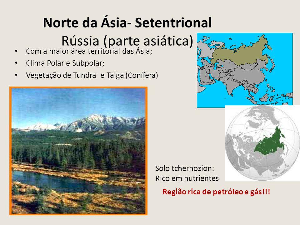 Norte da Ásia- Setentrional Rússia (parte asiática) Com a maior área territorial das Ásia; Clima Polar e Subpolar; Vegetação de Tundra e Taiga (Conífe