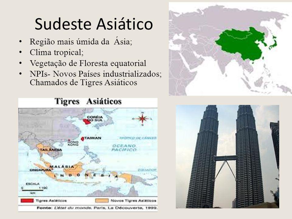 Sudeste Asiático Região mais úmida da Ásia; Clima tropical; Vegetação de Floresta equatorial NPIs- Novos Países industrializados; Chamados de Tigres A