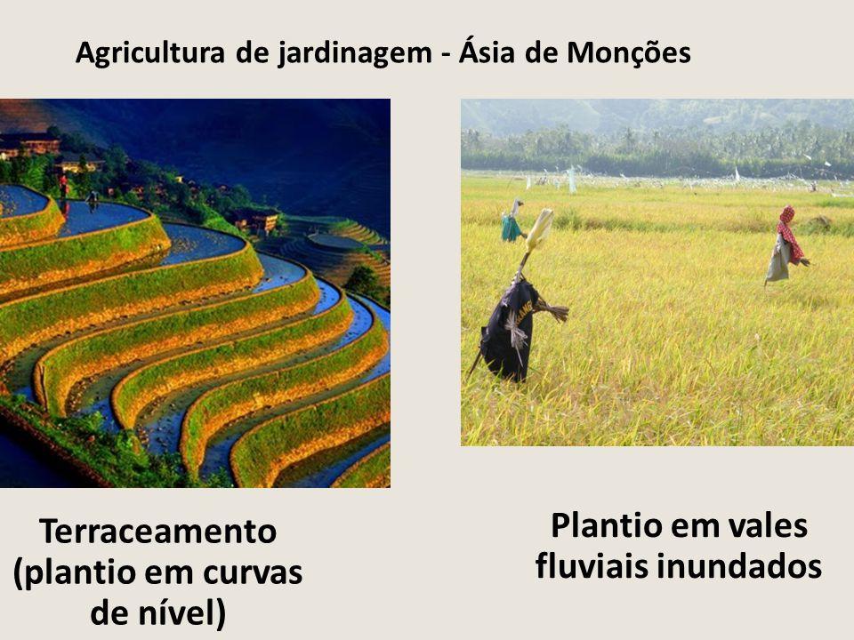 Agricultura de jardinagem - Ásia de Monções Terraceamento (plantio em curvas de nível) Plantio em vales fluviais inundados
