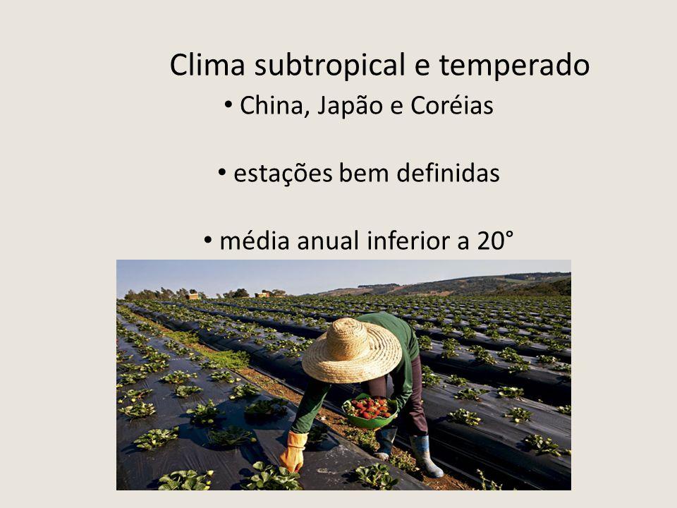 Clima subtropical e temperado China, Japão e Coréias estações bem definidas média anual inferior a 20°