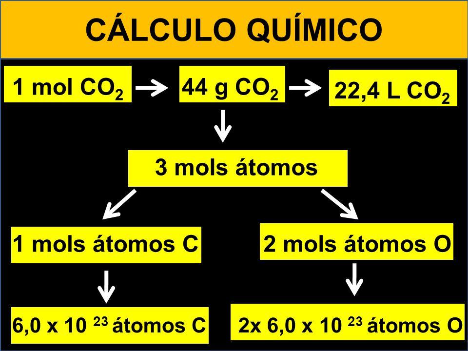 CÁLCULO QUÍMICO 1 mol CO 2 44 g CO 2 22,4 L CO 2 1 mols átomos C2 mols átomos O 6,0 x 10 23 átomos C2x 6,0 x 10 23 átomos O 6,0 x 10 23 moléculas 3 mo