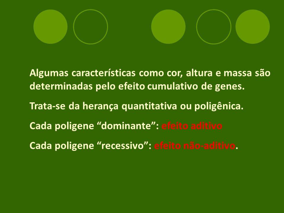 Algumas características como cor, altura e massa são determinadas pelo efeito cumulativo de genes.