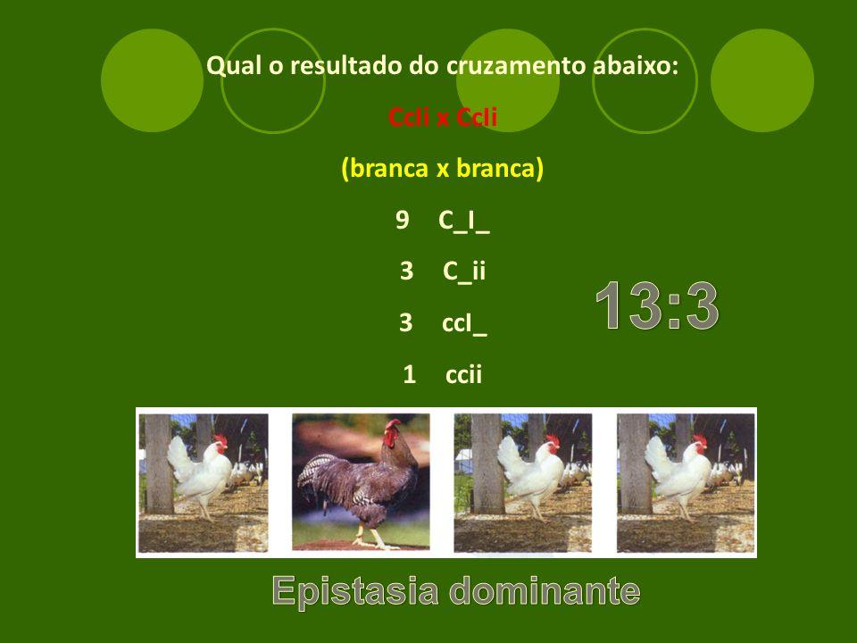 Qual o resultado do cruzamento abaixo: CcIi x CcIi (branca x branca) 9C_I_ 3C_ii 3ccI_ 1ccii
