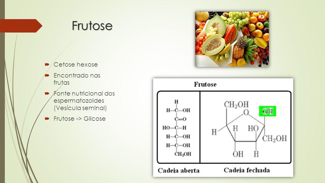 Frutose  Cetose hexose  Encontrado nas frutas  Fonte nutricional dos espermatozoides (Vesícula seminal)  Frutose -> Glicose