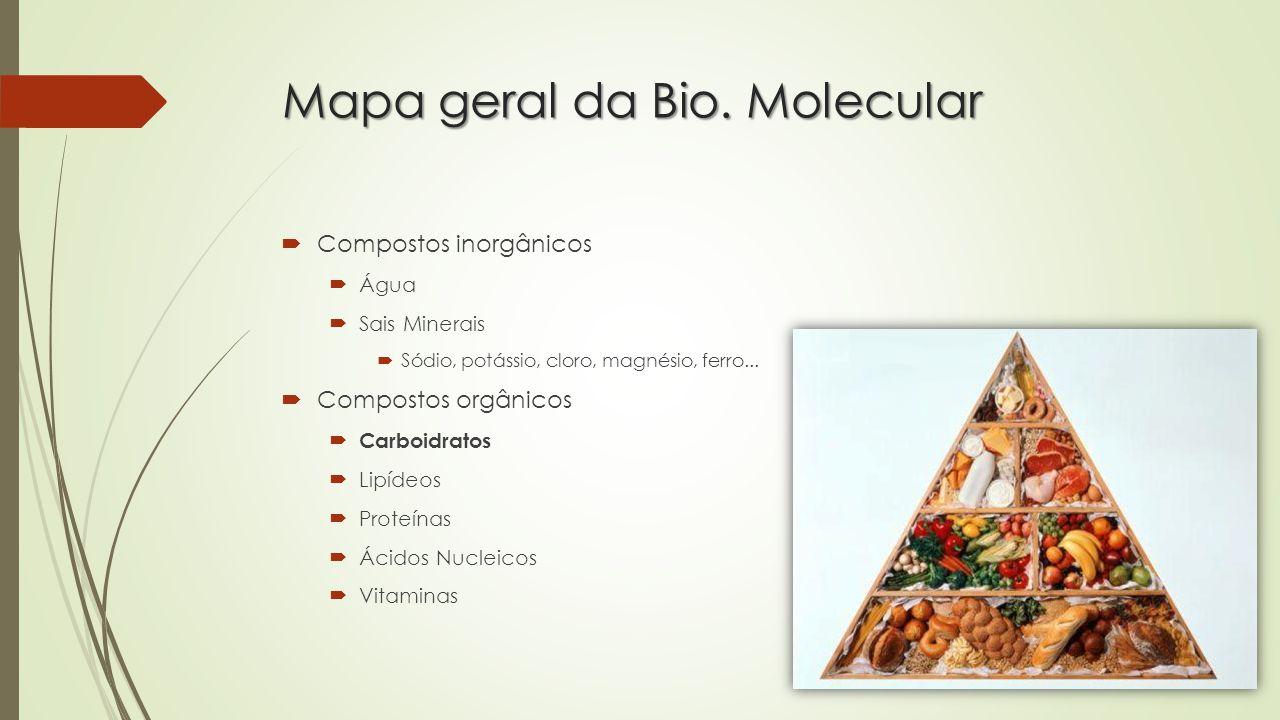 Mapa geral da Bio.