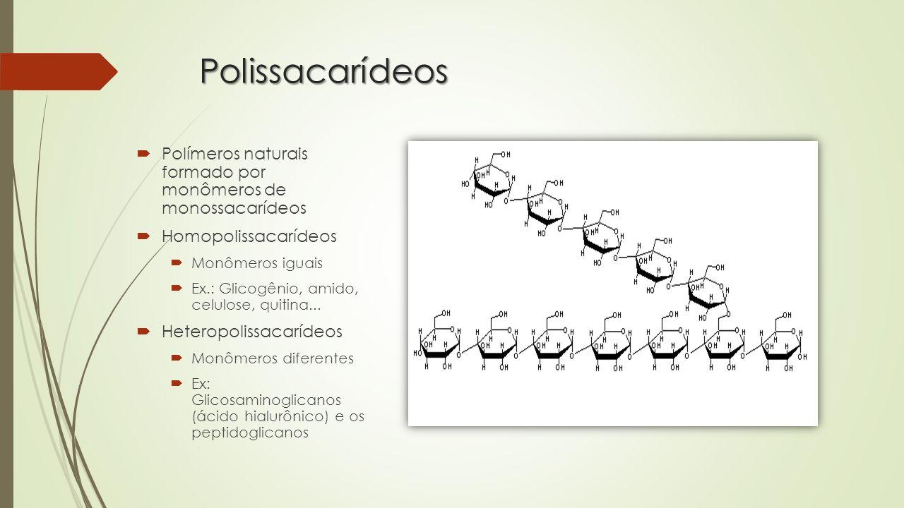 Polissacarídeos  Polímeros naturais formado por monômeros de monossacarídeos  Homopolissacarídeos  Monômeros iguais  Ex.: Glicogênio, amido, celulose, quitina...
