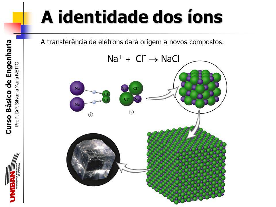 Curso Básico de Engenharia Prof a. Dr a. Silvania Maria NETTO A identidade dos íons 11 Na 17 Cl