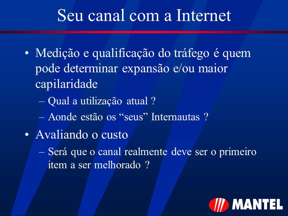 Seu canal com a Internet Medição e qualificação do tráfego é quem pode determinar expansão e/ou maior capilaridade –Qual a utilização atual .