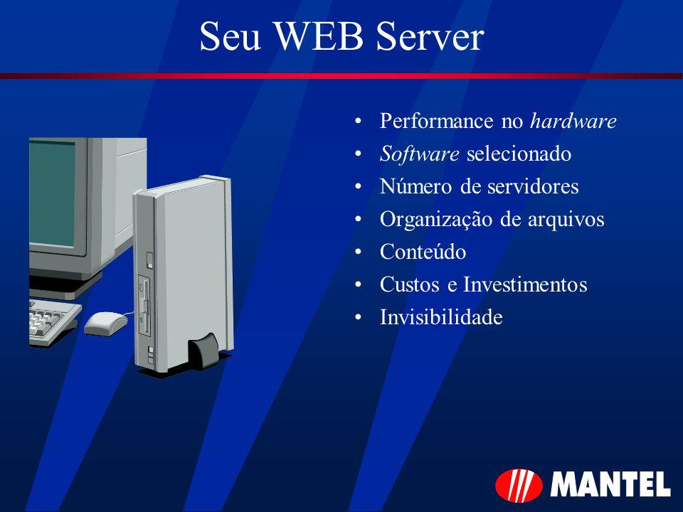 Seu WEB Server Performance no hardware Software selecionado Número de servidores Organização de arquivos Conteúdo Custos e Investimentos Invisibilidade