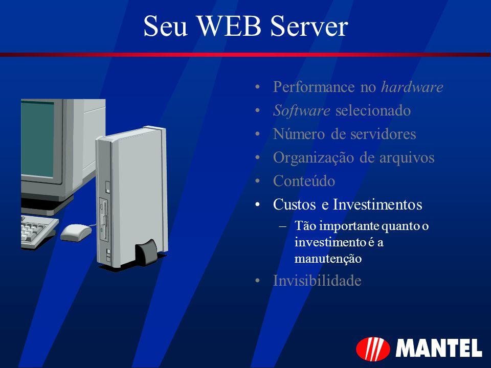 Seu WEB Server Performance no hardware Software selecionado Número de servidores Organização de arquivos Conteúdo Custos e Investimentos –Tão importante quanto o investimento é a manutenção Invisibilidade