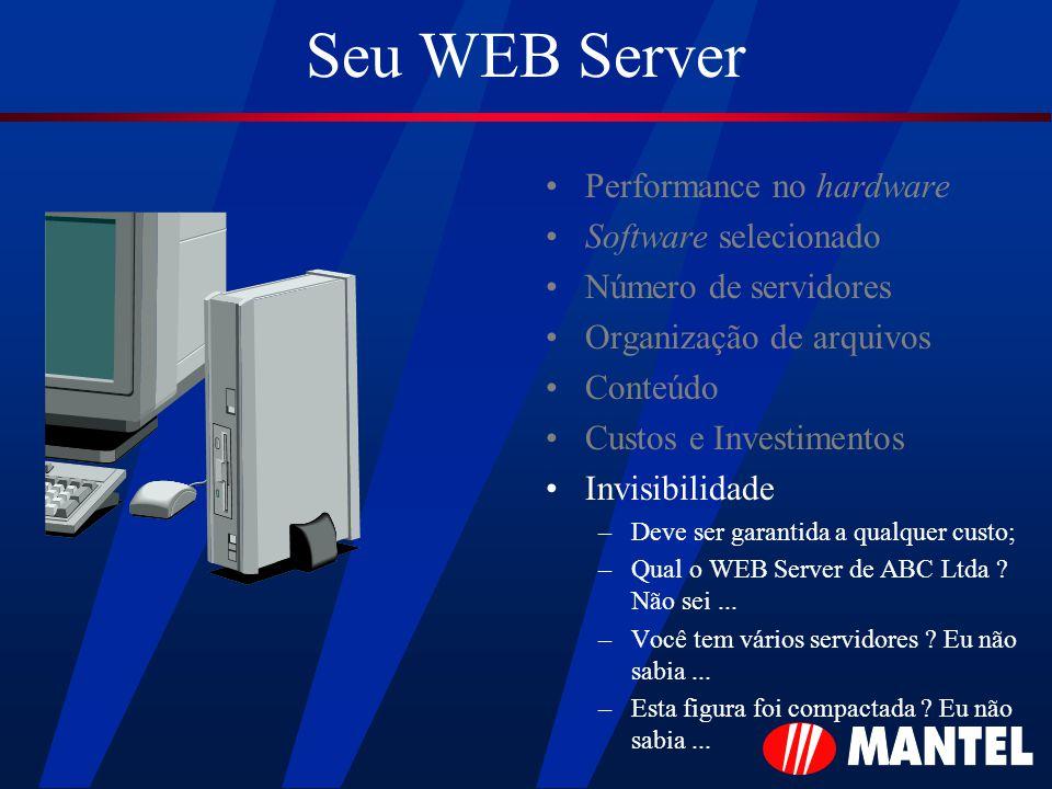 Seu WEB Server Performance no hardware Software selecionado Número de servidores Organização de arquivos Conteúdo Custos e Investimentos Invisibilidade –Deve ser garantida a qualquer custo; –Qual o WEB Server de ABC Ltda .