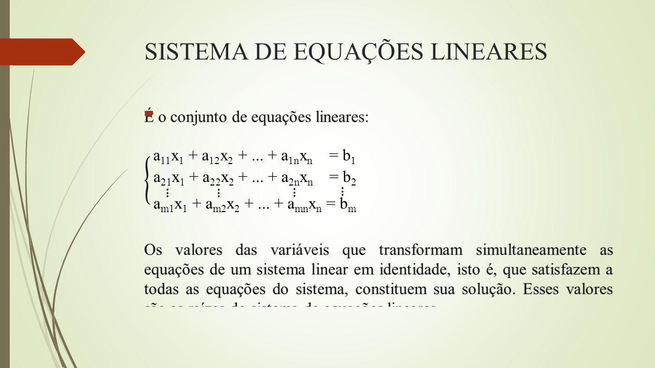 SISTEMA DE EQUAÇÕES LINEARES  a 11 x 1 + a 12 x 2 +... + a 1n x n = b 1 a 21 x 1 + a 22 x 2 +... + a 2n x n = b 2 a m1 x 1 + a m2 x 2 +... + a mn x n