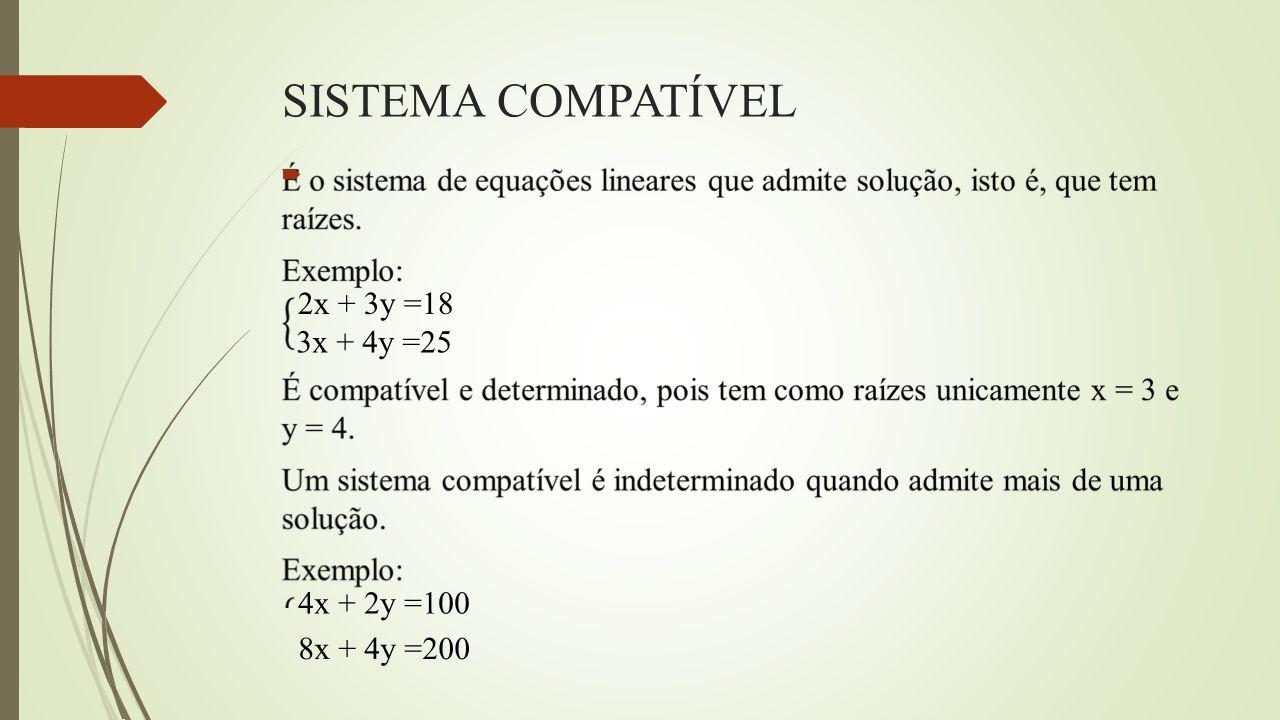 REFERÊNCIAS  STEINBRUCH, Alfredo; WINTERLE, Paulo.