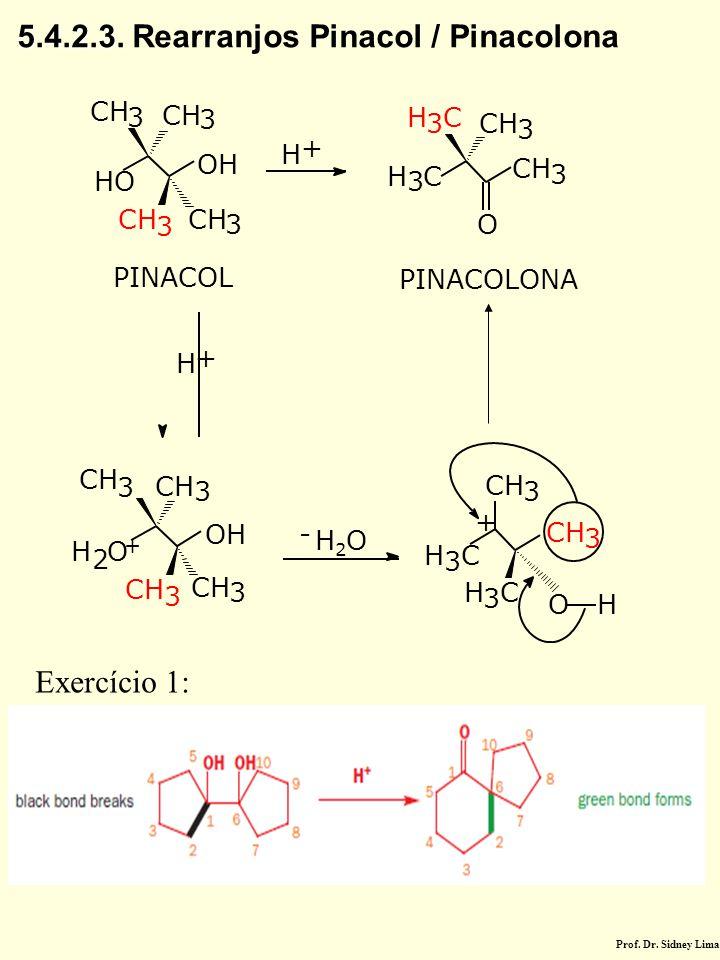 H + CH 3 3 3 OH HO CH 3 H 3 C 3 H 3 C 3 3 3 OH H 2 O 3 O PINACOL PINACOLONA H + CH 3 - H2OH2O H 3 C 3 H 3 C O H CH 3 + + 5.4.2.3. 5.4.2.3. Rearranjos
