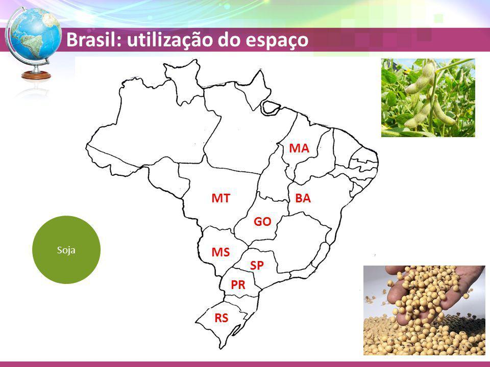 Brasil: utilização do espaço MS SP GO PR Soja MT RS BA MA
