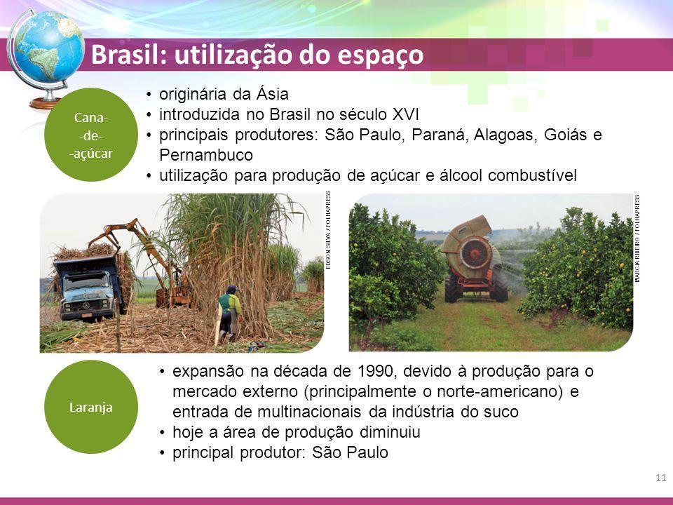 Brasil: utilização do espaço Cana- -de- -açúcar originária da Ásia introduzida no Brasil no século XVI principais produtores: São Paulo, Paraná, Alagoas, Goiás e Pernambuco utilização para produção de açúcar e álcool combustível expansão na década de 1990, devido à produção para o mercado externo (principalmente o norte-americano) e entrada de multinacionais da indústria do suco hoje a área de produção diminuiu principal produtor: São Paulo Laranja EDSON SILVA / FOLHAPRESS MARCIA RIBEIRO / FOLHAPRESS 11