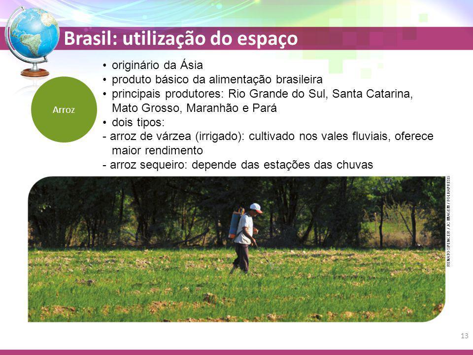 Arroz originário da Ásia produto básico da alimentação brasileira principais produtores: Rio Grande do Sul, Santa Catarina, Mato Grosso, Maranhão e Pa