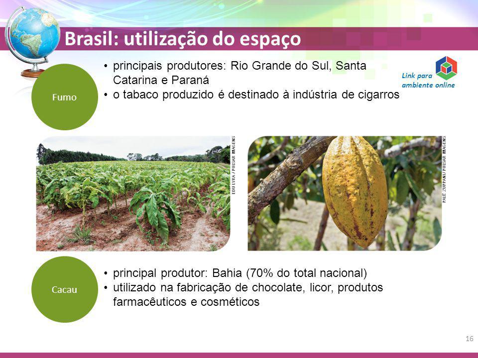 Brasil: utilização do espaço principais produtores: Rio Grande do Sul, Santa Catarina e Paraná o tabaco produzido é destinado à indústria de cigarros Fumo principal produtor: Bahia (70% do total nacional) utilizado na fabricação de chocolate, licor, produtos farmacêuticos e cosméticos Cacau EDU LYRA / PULSAR IMAGENS PALÊ ZUPPANI / PULSAR IMAGENS 16 Link para ambiente online