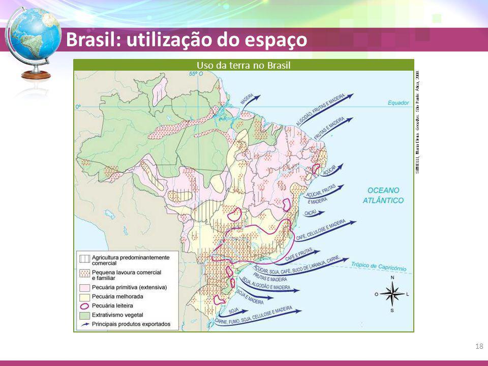 Brasil: utilização do espaço SIMIELLI, Maria Elena. Geoatlas. São Paulo: Ática, 2008. Uso da terra no Brasil 18