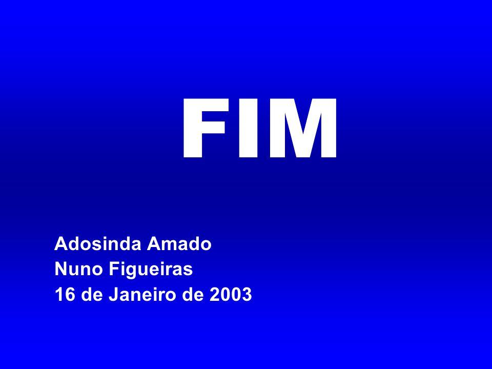 FIM Adosinda Amado Nuno Figueiras 16 de Janeiro de 2003