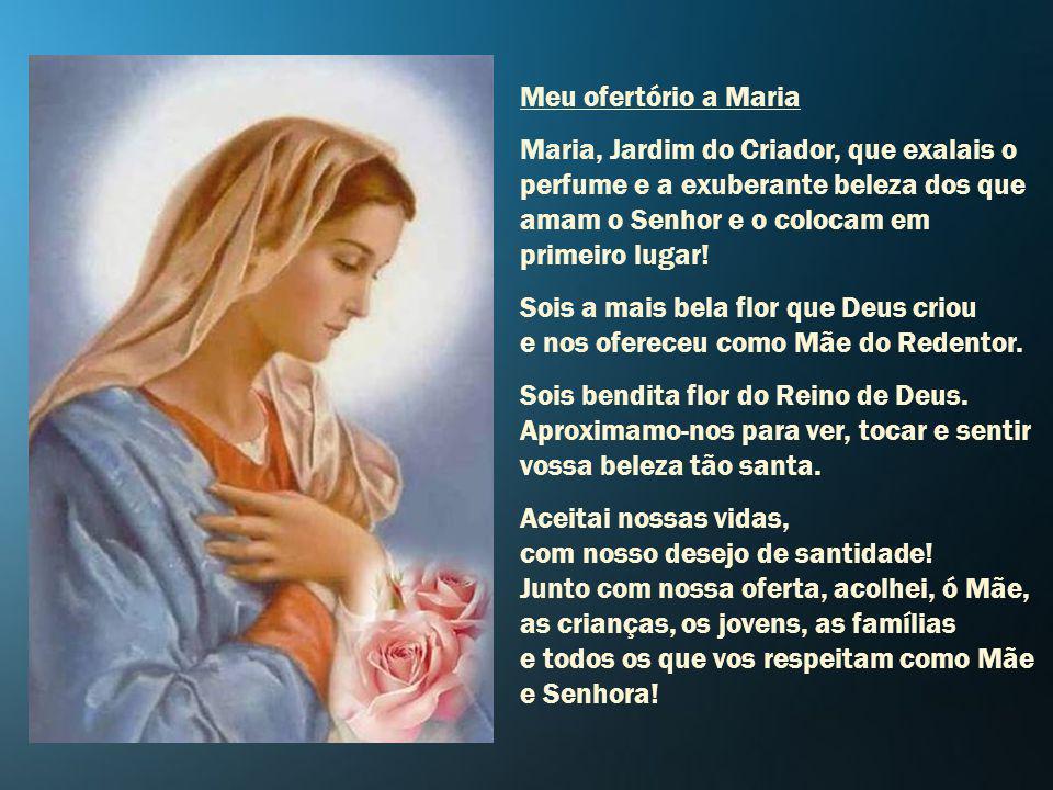 Recebei-me, ó Rainha incomparável, vós que o Cristo crucificado deu-nos por Mãe, no ditoso número de vossos filhos e filhas. Acolhei-me debaixo de vos