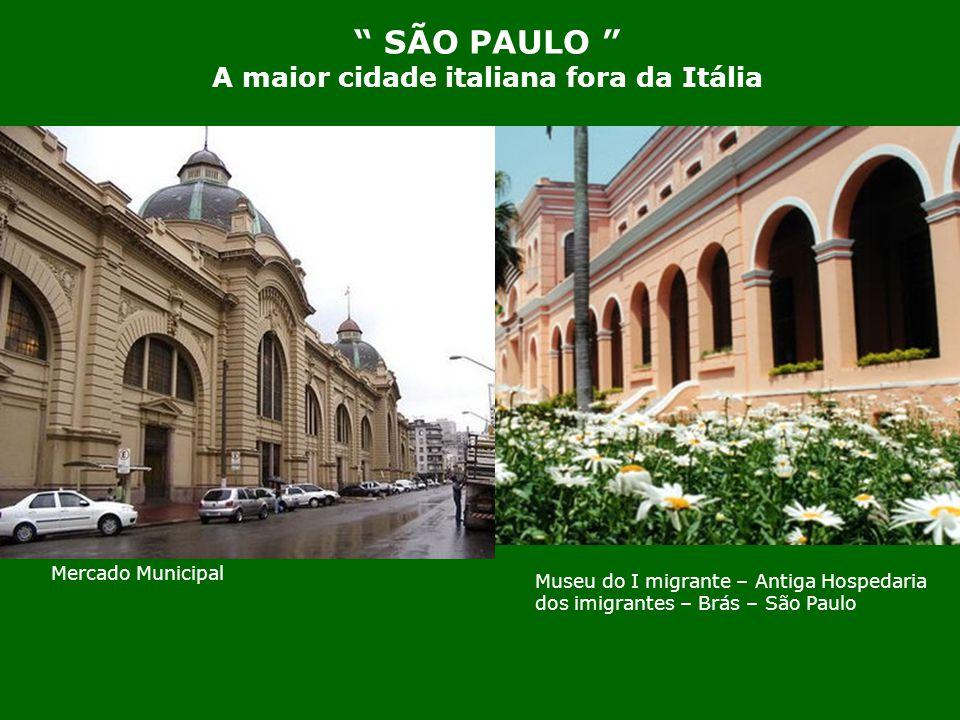 Colônia italiana no Brasil. A primeira viagem de imigrantes italianos para o Brasil ocorreu em 03 de Janeiro de 1874 quando partiram do Porto de Gênov