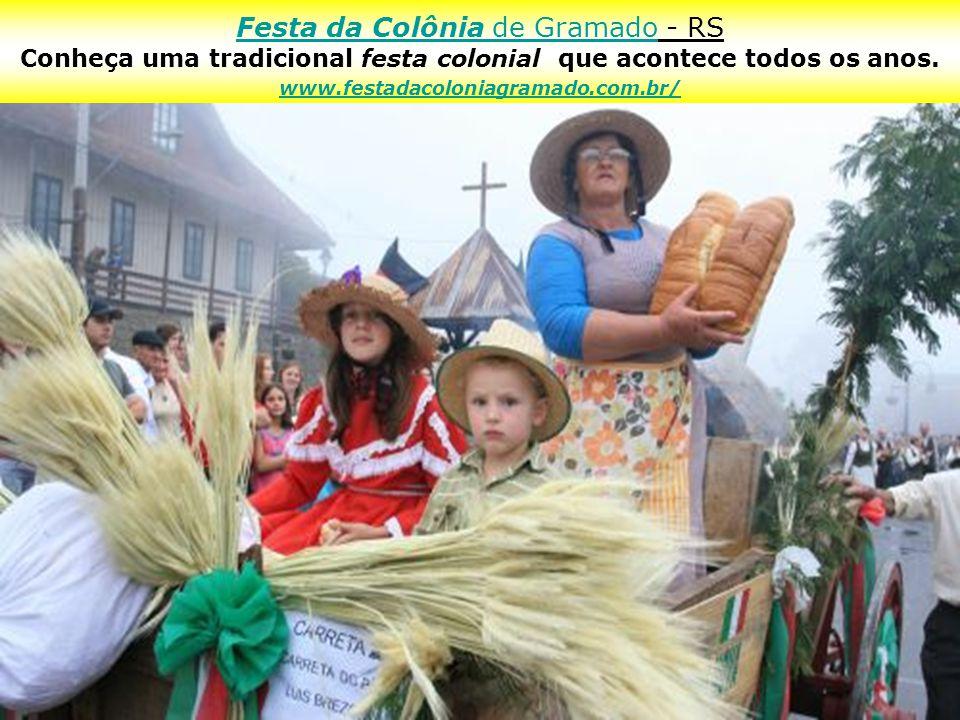 Caxias do Sul - RS A Festa da Uva é uma festa da cultura italiana e da produção agro- industrial regional que acontece a cada dois anos no município.