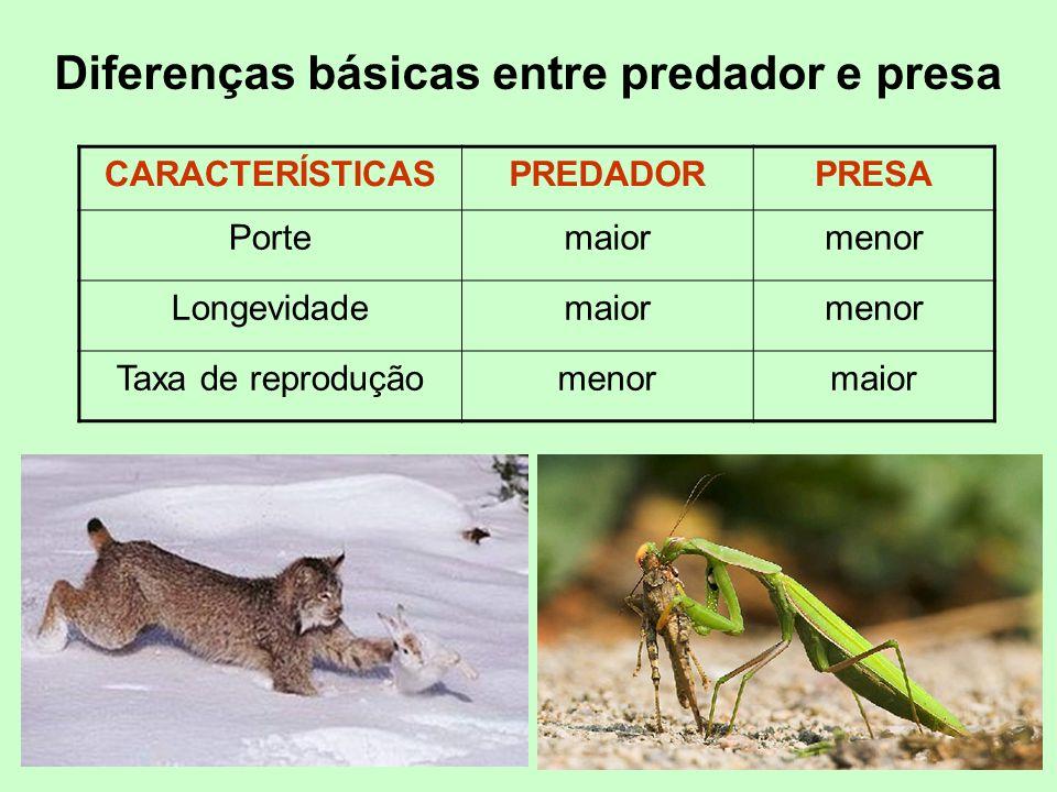 Diferenças básicas entre predador e presa CARACTERÍSTICASPREDADORPRESA Portemaiormenor Longevidademaiormenor Taxa de reproduçãomenormaior