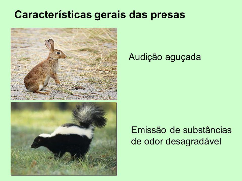 Audição aguçada Emissão de substâncias de odor desagradável Características gerais das presas