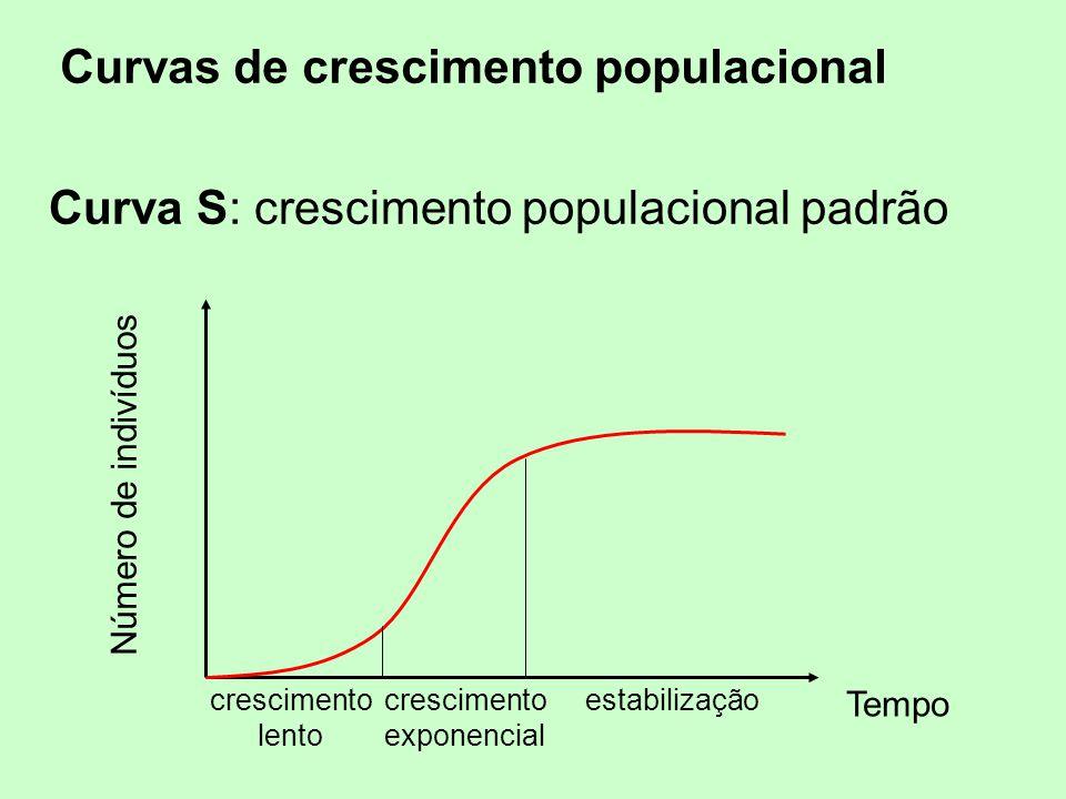 Curvas de crescimento populacional Curva S: crescimento populacional padrão Número de indivíduos Tempo crescimento lento crescimento exponencial estab