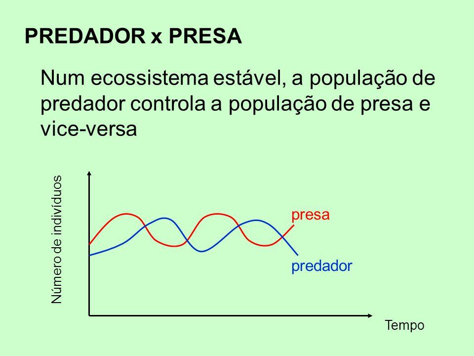 PREDADOR x PRESA Número de indivíduos Tempo presa predador Num ecossistema estável, a população de predador controla a população de presa e vice-versa