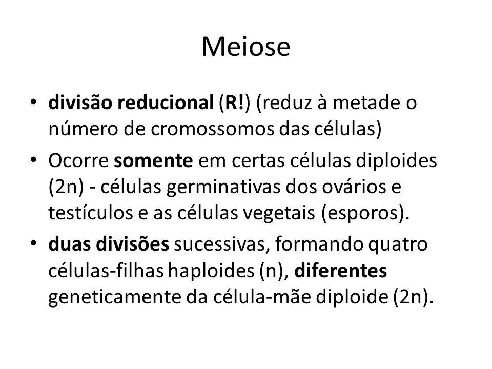 Meiose Permite a reprodução sexuada, formação dos gametas.