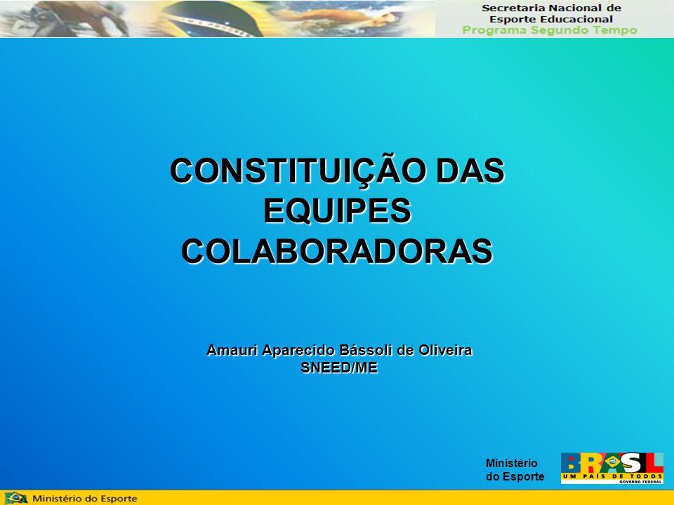 Ministério do Esporte CONSTITUIÇÃO DAS EQUIPES COLABORADORAS Amauri Aparecido Bássoli de Oliveira SNEED/ME