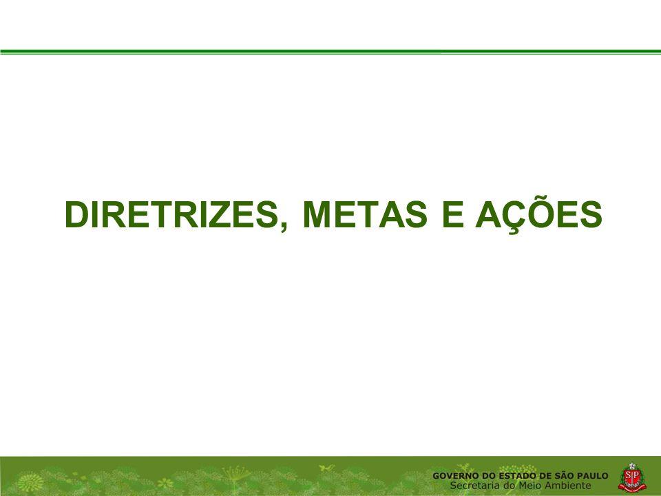 Coordenadoria de Planejamento Ambiental Departamento de Informações Ambientais Centro de Integração e Gerenciamento de Informações DIRETRIZES, METAS E AÇÕES
