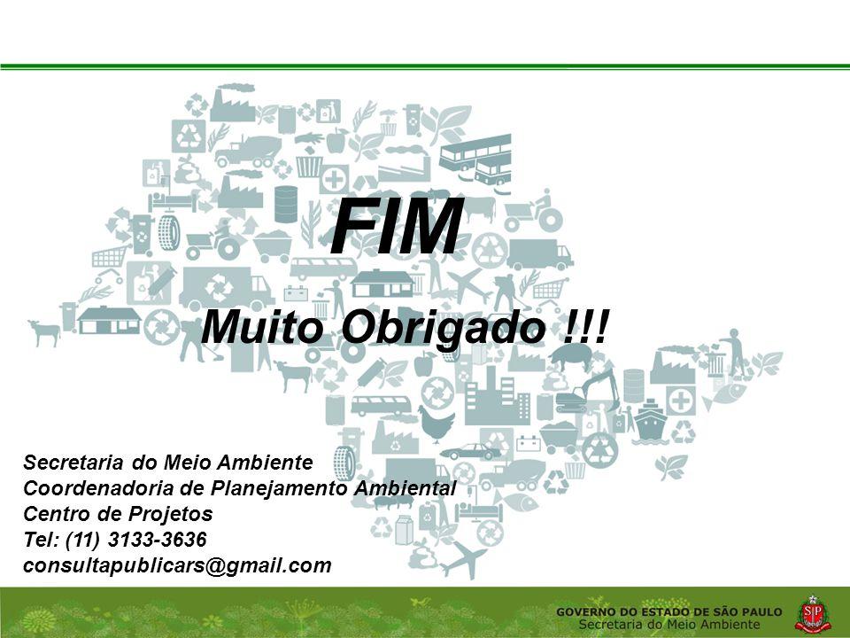 Coordenadoria de Planejamento Ambiental Departamento de Informações Ambientais Centro de Integração e Gerenciamento de Informações Muito Obrigado !!.