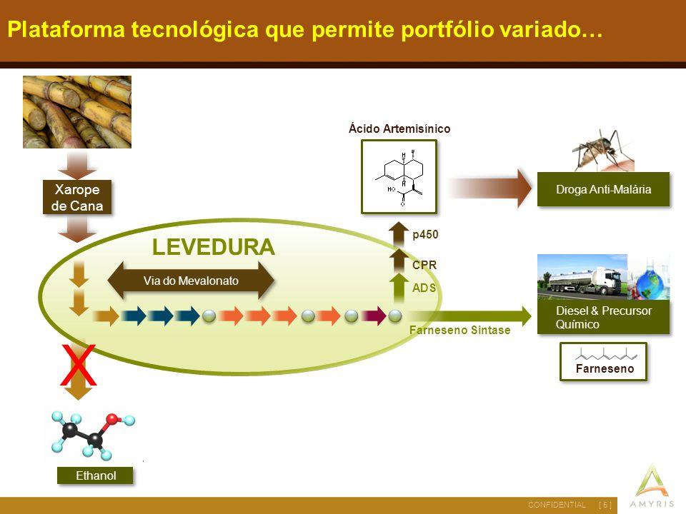 [ 6 ]CONFIDENTIAL As leveduras em ação… Farneceno ( Precursor do Diesel) Foto real em microscópio com contraste de leveduras produzindo farneceno Leveduras desenvolvidas pela Amyris Caldo de cana-de-açúcar
