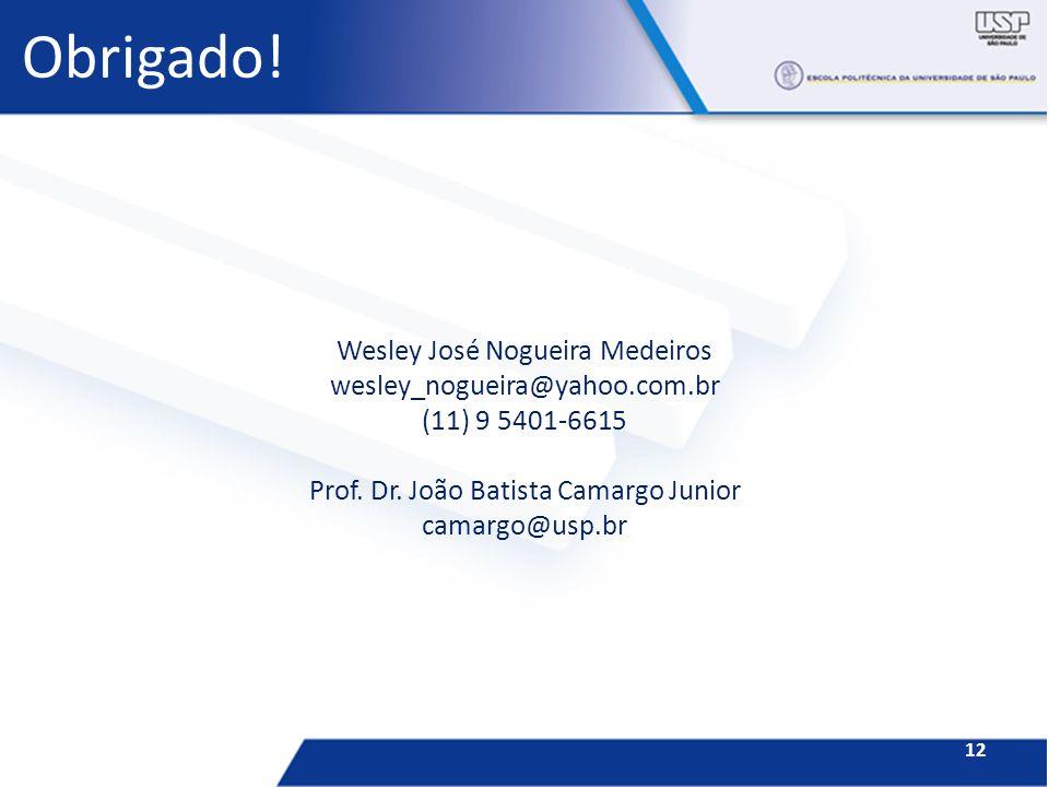 Obrigado! Wesley José Nogueira Medeiros wesley_nogueira@yahoo.com.br (11) 9 5401-6615 Prof. Dr. João Batista Camargo Junior camargo@usp.br 12