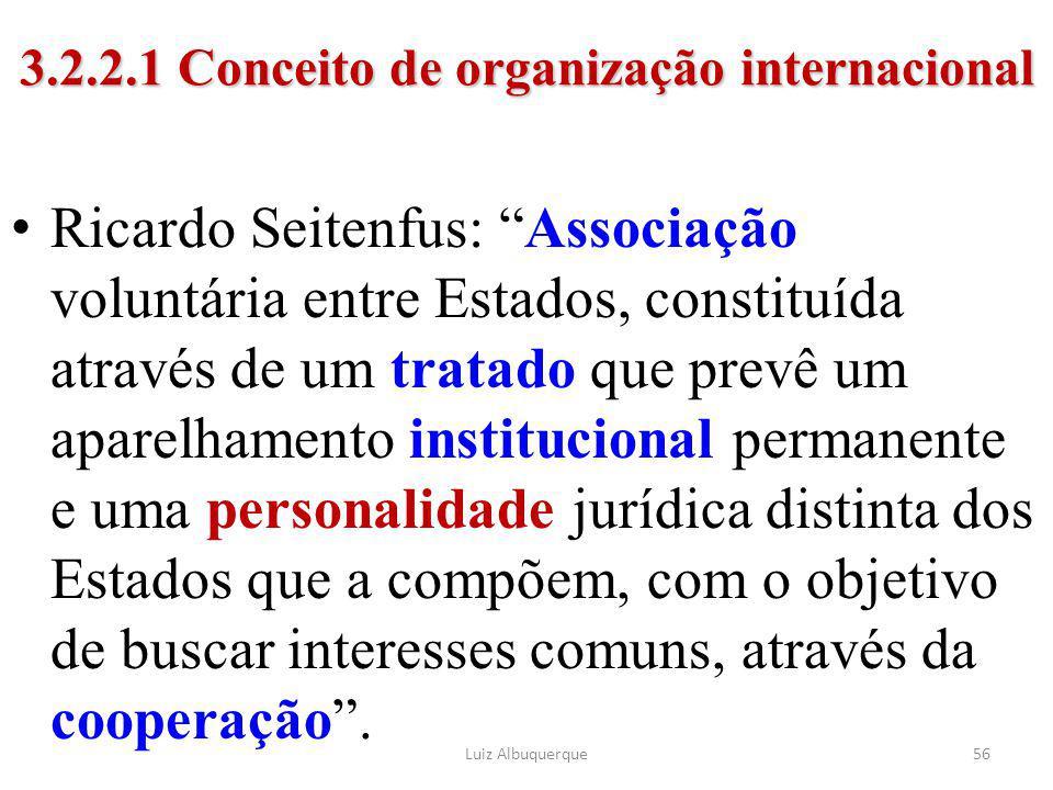 """56 3.2.2.1 Conceito de organização internacional Ricardo Seitenfus: """"Associação voluntária entre Estados, constituída através de um tratado que prevê"""
