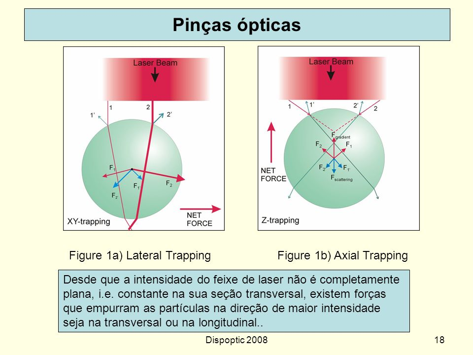 Dispoptic 200817 http://129.215.76.37:8080/Plone/research/micromanipulation/optical-tweezers-and- applications Optical Tweezers and Applications Optic