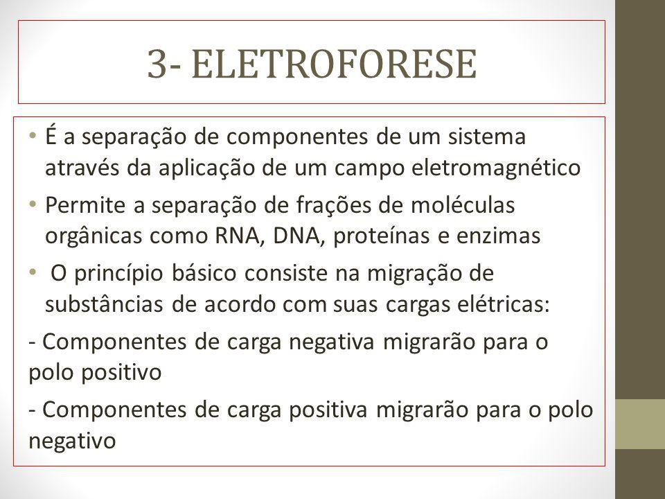 3- ELETROFORESE É a separação de componentes de um sistema através da aplicação de um campo eletromagnético Permite a separação de frações de molécula