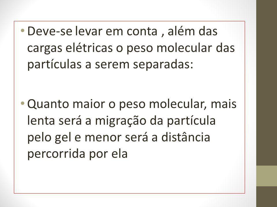 Deve-se levar em conta, além das cargas elétricas o peso molecular das partículas a serem separadas: Quanto maior o peso molecular, mais lenta será a