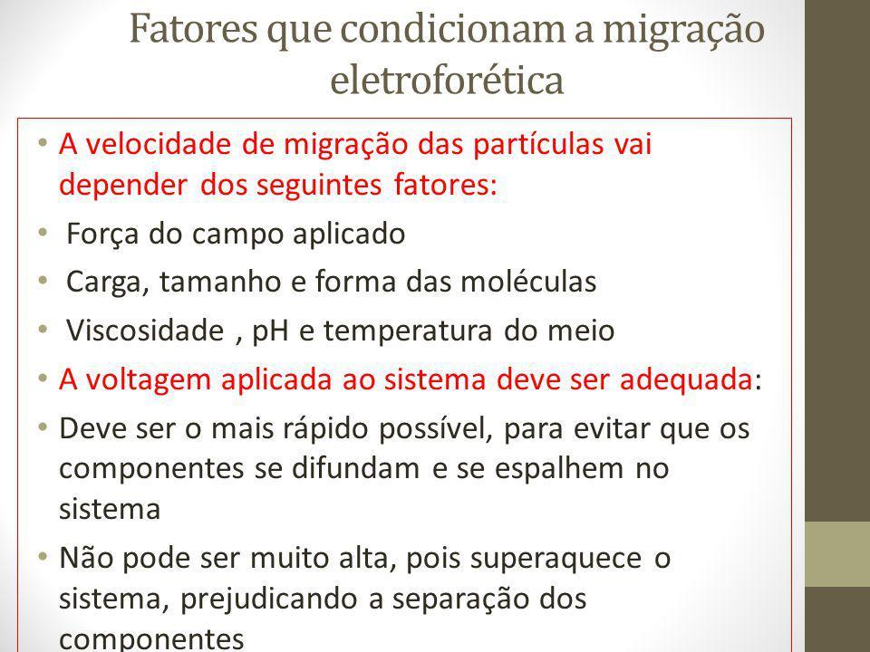 Fatores que condicionam a migração eletroforética A velocidade de migração das partículas vai depender dos seguintes fatores: Força do campo aplicado