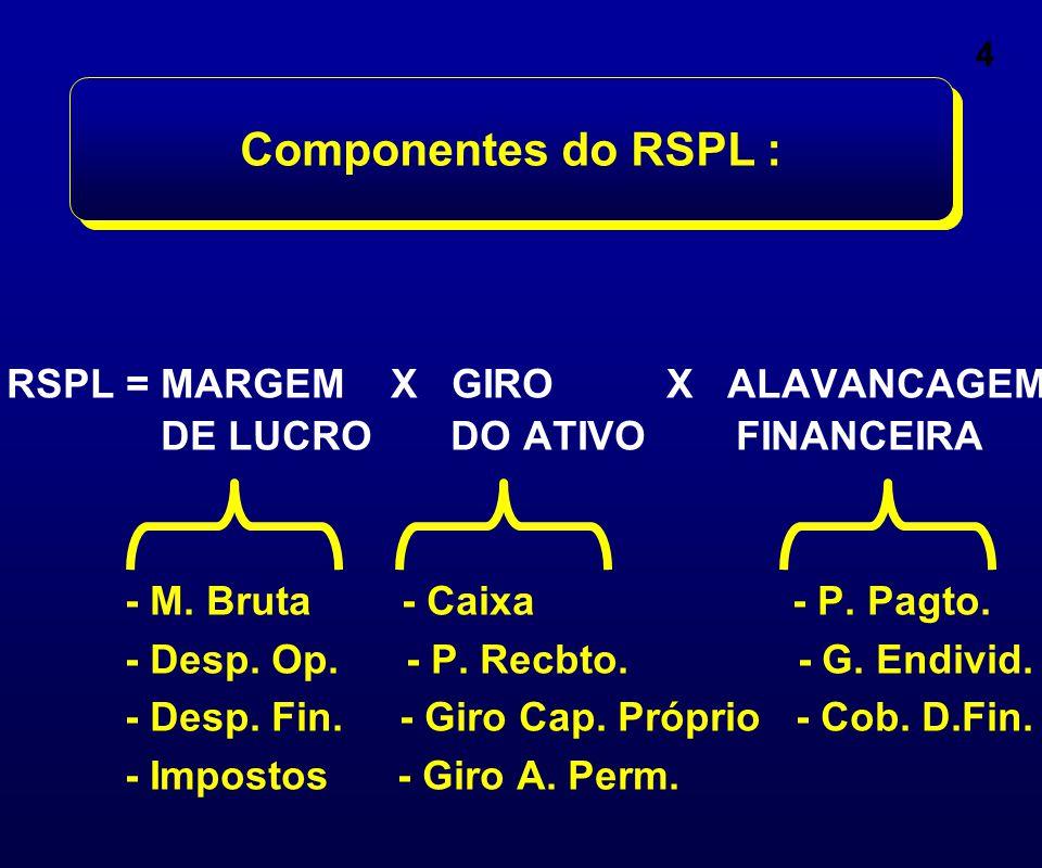 4 Componentes do RSPL : RSPL = MARGEM X GIRO X ALAVANCAGEM DE LUCRO DO ATIVO FINANCEIRA - M. Bruta - Caixa - P. Pagto. - Desp. Op. - P. Recbto. - G. E