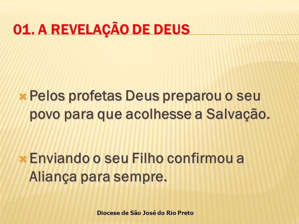 Diocese de São José do Rio Preto 01.