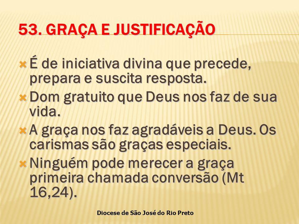 Diocese de São José do Rio Preto 53.