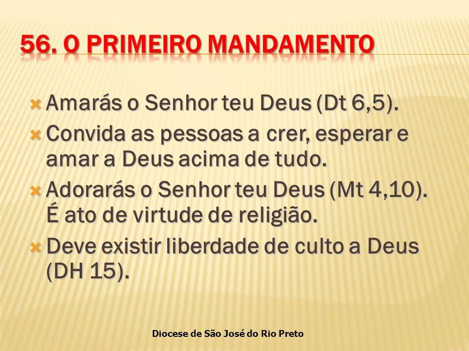 Diocese de São José do Rio Preto  Amarás o Senhor teu Deus (Dt 6,5).