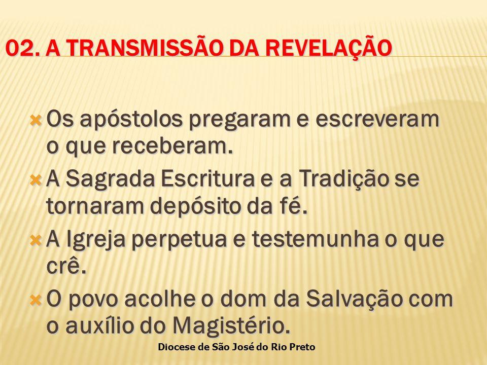 Diocese de São José do Rio Preto 02.