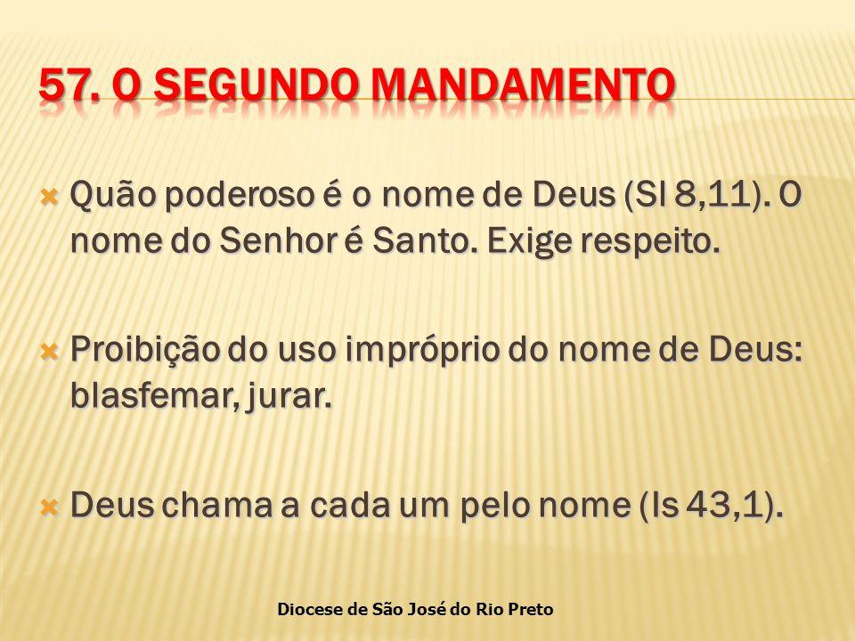 Diocese de São José do Rio Preto  Quão poderoso é o nome de Deus (Sl 8,11).