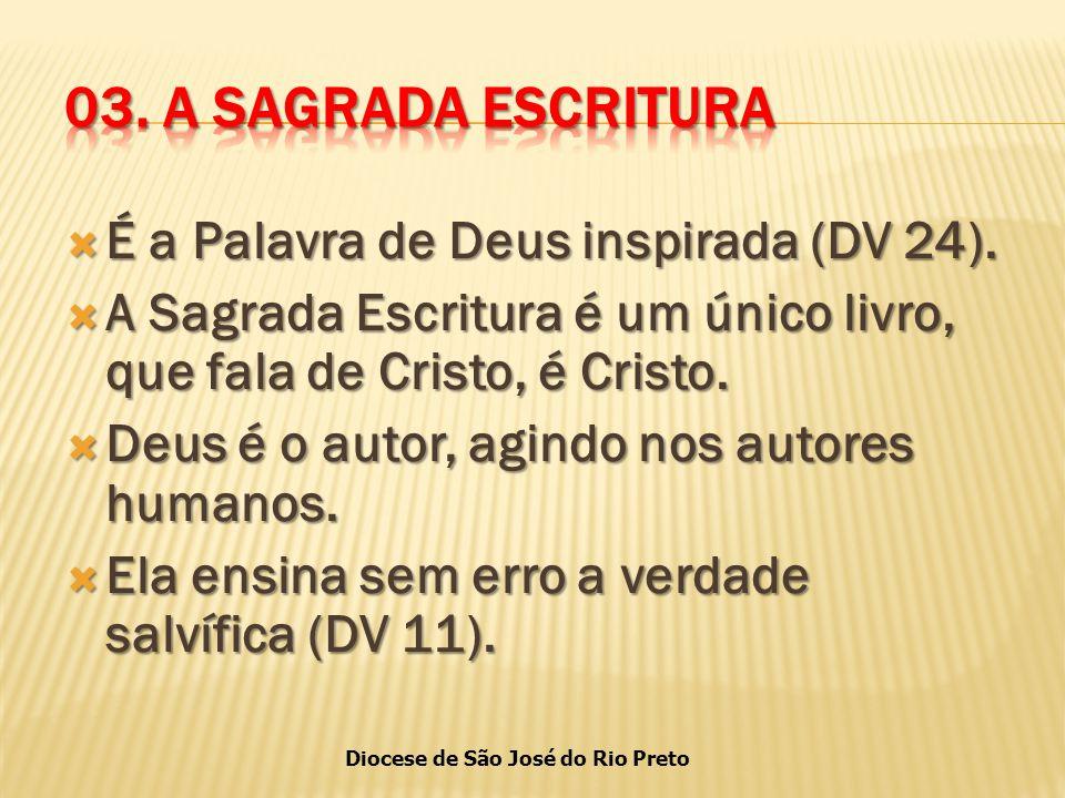 Diocese de São José do Rio Preto  É a Palavra de Deus inspirada (DV 24).